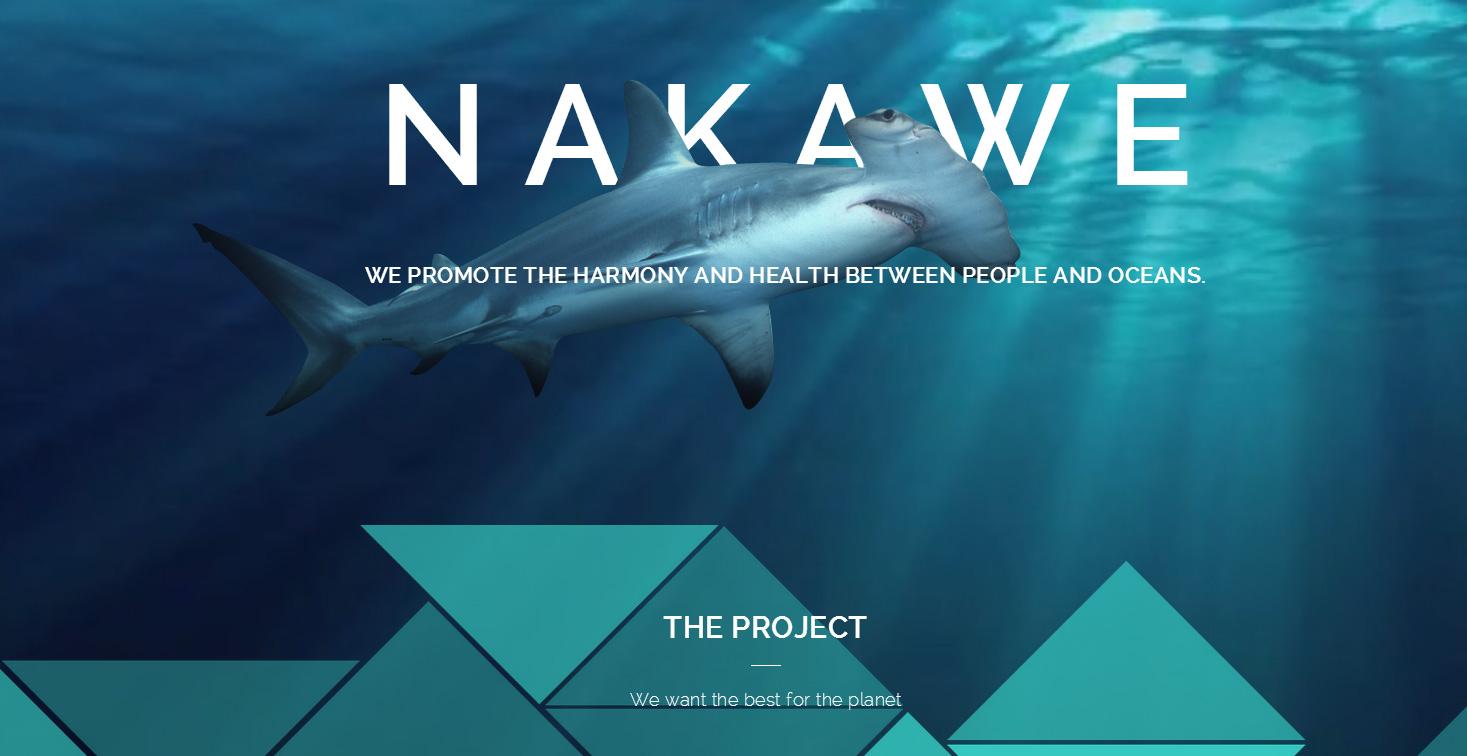 nakawe-balaclava