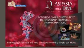 """CONCURSO ONLINE """"ASPASIA DIVE & MUREX DIVE RESORTS"""" DE FOTOGRAFÍA SUBMARINA, MODALIDAD MACRO"""