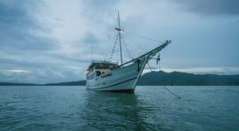 F2a. ISLAS FORGOTTEN. RUTA SUR, KALABAHI – SAUMLAKI. CRUCERO CON EL M/Y OCEANIC
