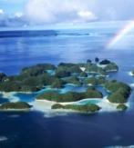 A2a. PALAU (ISLAS CAROLINAS – MICRONESIA). FISH'N FINS